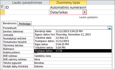 Datos / laiko lauko formato ypatybė