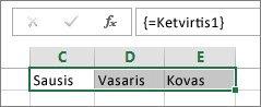Konstanta su pavadinimu, naudojama kaip masyvo formulė