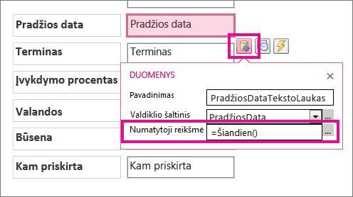 """Datos lauko numatytosios reikšmės nustatymas """"Access"""" taikomojoje programoje."""