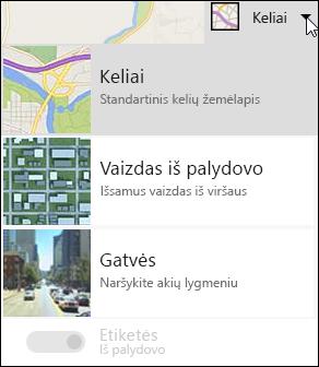 """""""Bing"""" žemėlapio žiniatinklio dalies žemėlapio tipas"""