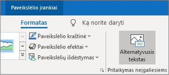"""Mygtukas Alternatyvusis tekstas programos """"Outlook"""", skirtos """"Windows"""", juostelėje."""