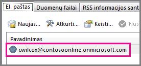 "Abonementas dialoge lange Abonemento parametrai programoje ""Outlook 2013"""