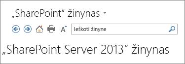 """""""SharePoint 2013"""" žinynas srities antraštės"""