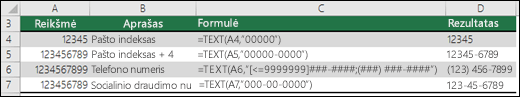 Specialieji funkcijos TEXT formatai