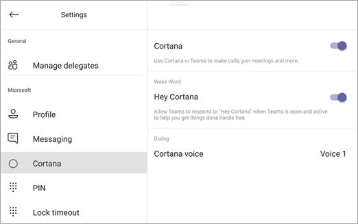 Cortana parinktys