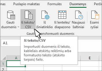 Teksto/CSV žymėjimas skirtuke duomenys