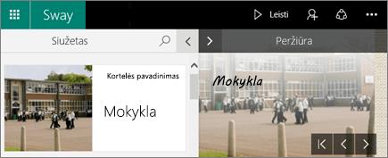 Ekrano nuotrauka, vaizduojanti sritis Siužetas ir Peržiūra.