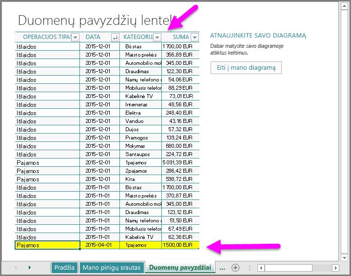 Įveskite duomenų pavyzdį į šabloną Mano pinigų srautai