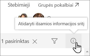 Sąrašo informacijos srities ekrano nuotrauka