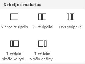 """Sekcijos maketo meniu programoje """"SharePoint"""" ekrano kopija."""