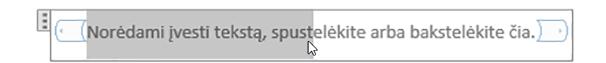Paprastojo teksto turinio valdiklis teksto vietos rezervavimo ženklo redagavimas
