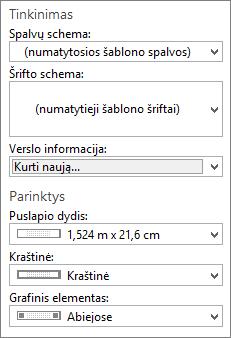 Publisher ekrano tinkinimas ir parinktys parinktis.
