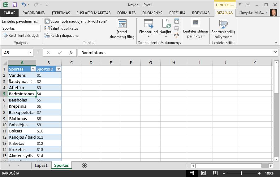 """Lentelės pavadinimo kūrimas """"Excel"""""""