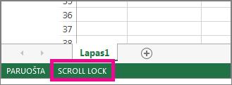"""""""Scroll Lock"""" rodomas apatiniame kairiajame ekrano kampe"""