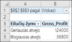 Scenarijaus suvestinės lentelės PivotTable ataskaita