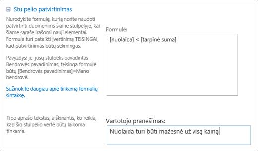 Stulpelio tikrinimo dialogo langas su laukais užpildomas duomenų pavyzdys