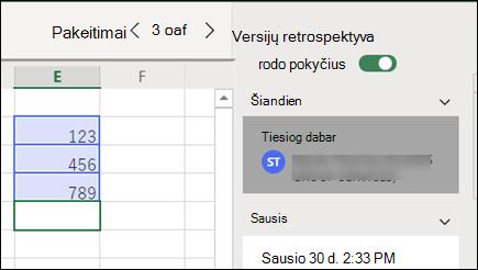 """""""Excel"""" žiniatinklio versijų retrospektyvos sritis"""