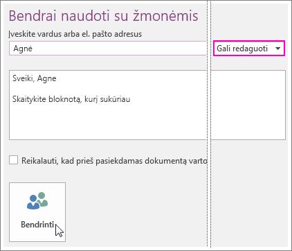 """Bendrinimo vartotojo sąsajos programoje """"OneNote 2016"""" ekrano nuotrauka."""
