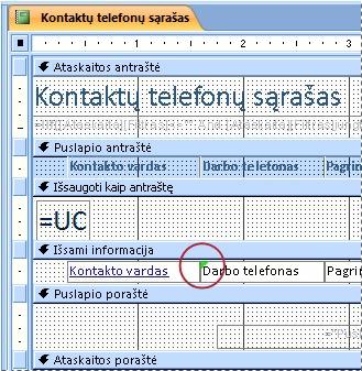 Ataskaita, kurioje yra teksto laukas su klaidingai įvestu identifikatoriumi