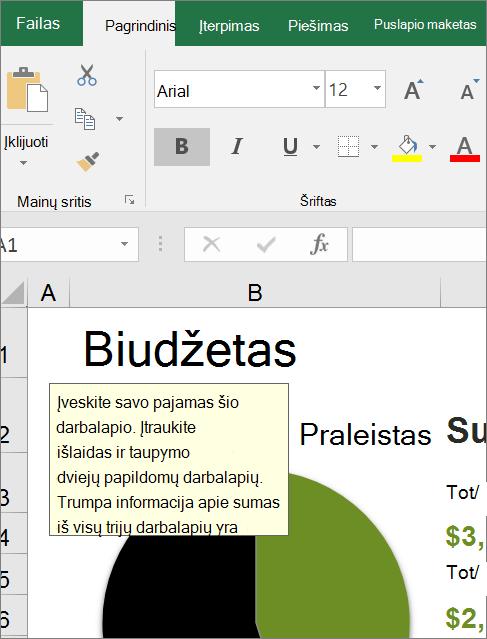 """""""Excel"""" vartotojo sąsajos ekrano klipas, kuriame rodoma įtaisytoji instrukcija"""