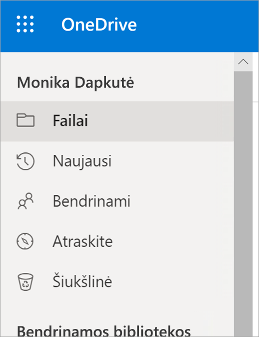 """""""OneDrive"""" meniu Rodinys"""