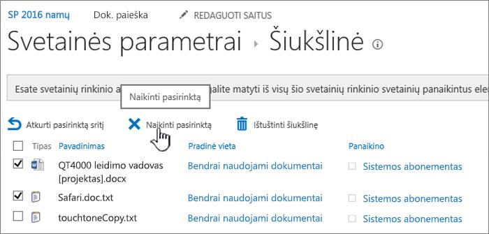 SharePoint 2016 šiukšlinės puslapio naikinti mygtuko paveikslėlis