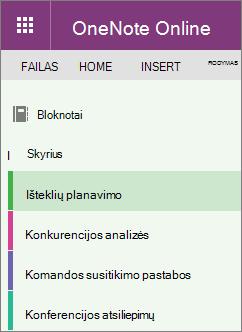 """""""OneNote"""" sekcijų pavyzdys"""