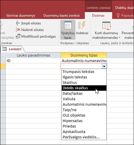 """Ekrano duomenų tipų sąrašą programoje """"Access"""" lentelėje. Daug yra pažymėtas."""