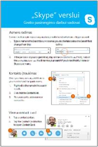 """""""Skype"""" verslui greito pasirengimo darbui vadovo grupavimo miniatiūra"""