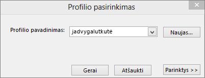 Profilio dialogo lango su naujo profilio pavadinimu pasirinkimas