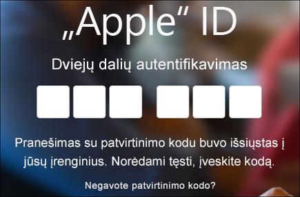 Įveskite savo dviejų dalių autentifikavimo kodą