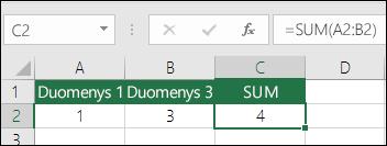 Funkcija SUM automatiškai pakoreguos įterptas arba panaikintas eilutes ir stulpelius