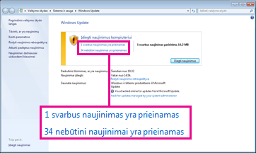 "Saitais su ""Windows Update"" sritimi"
