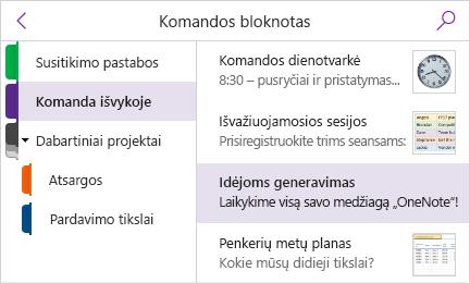 Sekcijos sritis ir puslapių sąrašas su rodomomis puslapio peržiūromis