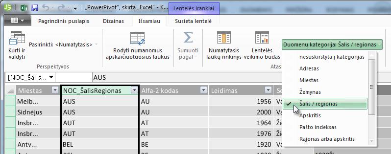 """Duomenų kategorijos """"PowerPivot"""""""