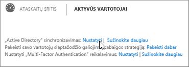 """Pasirinkite Nustatyti šalia """"Active Directory"""" sinchronizavimo"""