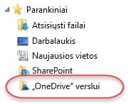 """""""OneDrive"""" verslui parankinių sąrašas SP2016"""
