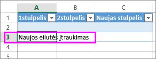 Įtraukite naują eilutę įvesdami duomenų į eilutę po paskutine lentelės eilute