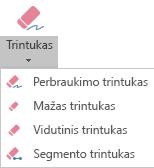 """Programoje """"PowerPoint"""", skirtoje """"Office 365"""", yra keturi skaitmeninio rankraščio trintukai."""