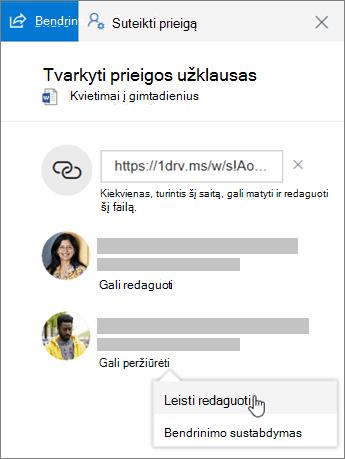 Ekrano nuotrauka, vaizduojanti bendrinamo failo srities Išsami informacija sekciją Bendrinimas.