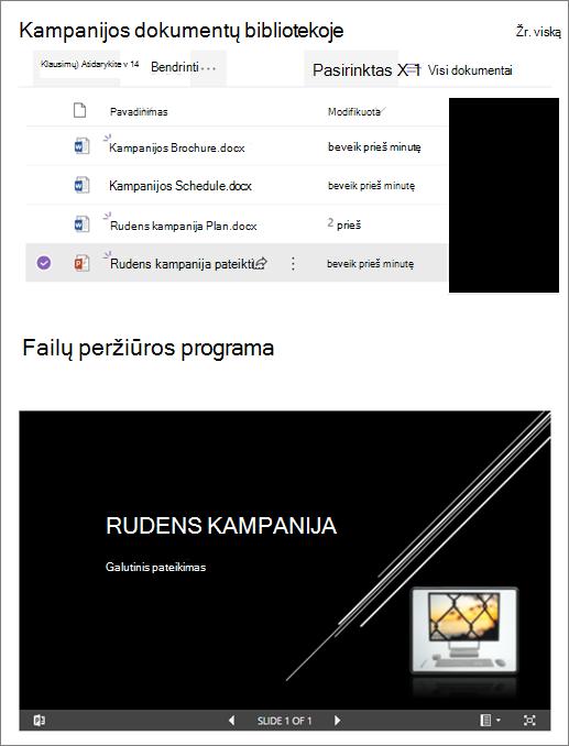 Failų peržiūros programos puslapio dalies, prijungtos prie dokumentų bibliotekos, pavyzdys
