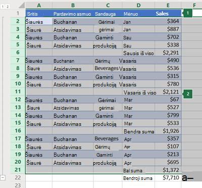 """Excel Online"" eilučių kontūras"