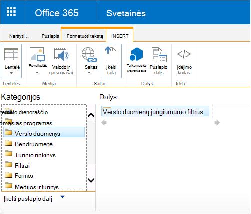 Excel žiniatinklio prieigos puslapio dalis nėra verslo duomenų kategorija
