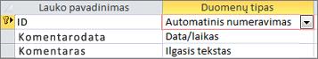 """""""AutoNumber"""" pirminis raktas, pažymėtas kaip ID """"Access"""" lentelės dizaino rodinyje"""