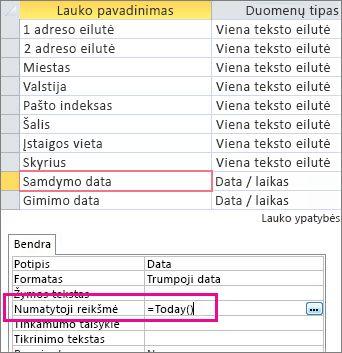 """Datos / laiko lauko numatytosios reikšmės nustatymas """"Access"""" lentelėje."""