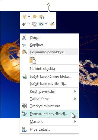 """""""Publisher"""" parinkčių Formatuoti paveikslėlį ekrano nuotrauka"""