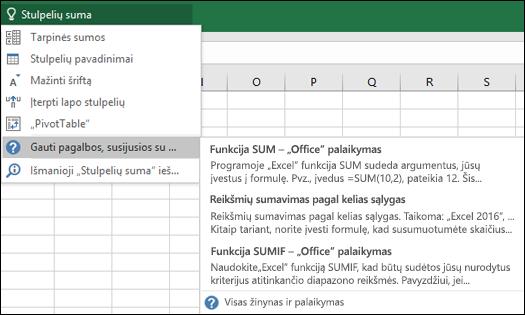 """Spustelėkite """"Excel"""" lauką Ką norite daryti ir įveskite, Ką norite daryti. Funkcija Ką norite daryti bandys padėti atlikti šią užduotį."""