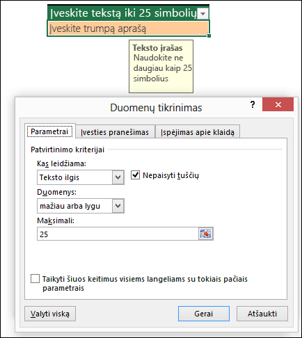 Duomenų tikrinimo pavyzdys su ribotu teksto ilgiu