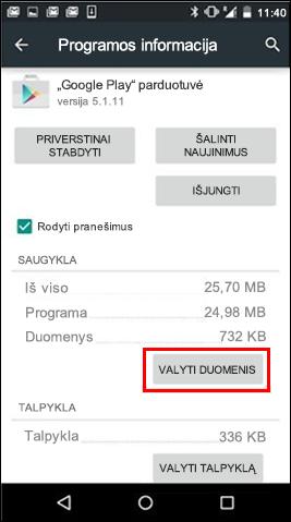Mygtukas Valyti duomenis