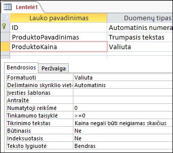 """Lauko tikrinimo taisyklė, rodoma """"Access"""" lentelių kūrimo įrankyje"""